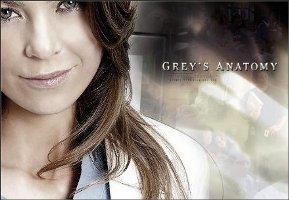 novedades-de-la-quinta-temporada-de-greys-anatomy